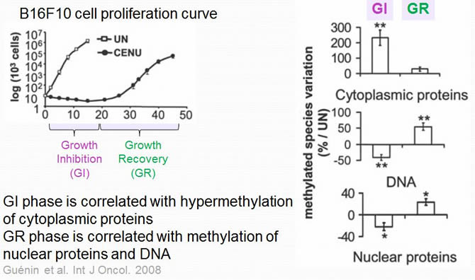 Chemotherapy alters cell methylation